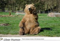 Took a photo of a bear waving at me - http://www.funnyclone.com/took-a-photo-of-a-bear-waving-at-me/