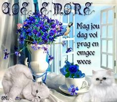 Lekker Dag, Simply Life, Afrikaanse Quotes, Goeie Nag, Goeie More, Living Water, Good Morning Wishes, Deep Thoughts, Beautiful Pictures