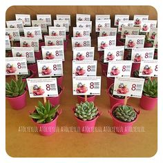 Sukulent Aşkına🌵 (@atolyeylul) • Instagram fotoğrafları ve videoları Wedding Gift Messages, Happy Birthday Messages, Wedding Gifts, Cactus, Succulent Favors, Cowgirl Birthday, Crewel Embroidery, Baby Shower Favors, Garden Inspiration