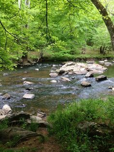Eno River State Park offers secluded wilderness trails with the serenity of a clear river drifting and cascading over a rocky stream bed.