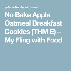 No Bake Apple Oatmeal Breakfast Cookies (THM E) – My Fling with Food