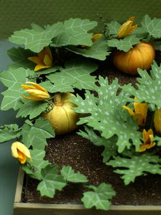 Pumpkin or Squash Paper Flower Kit for by TheMiniatureGarden