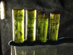 Lot of 4 Gold Cap Terminated Green Tourmaline Elbaite Specimens. 7.5 Grams.