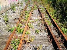 Weichenstellung einer rostigen alten Weiche mit rostigen Eisenbahngleisen in Münster in Westfalen im Münsterland