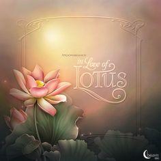 """Moonbeam's ~ """"In Love of Lotus"""" ~ moonbeam1212."""