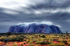First Light: This image shows Uluru, usually a bright earth red colour, at first light in blue hues. Julie Fletcher insists this photograph is exactly how the iconic rock looked and she did not apply any filter to the image