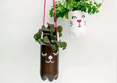 Upcycle plastic bottles into planters for any occasion or holiday, or any type of plant from herbs to ivies.