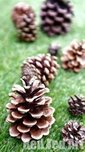Pine cone craft ideas - what to make with those wonderfully tactile, yet awkward pine cones. Bloggers get together to share 12 craft ideas with you and your kids!