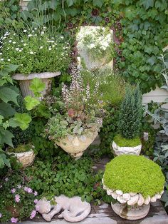 *Create small gardens in unusual places around the yard