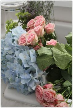 Blue hydrangeas and pink roses fresh from the garden.