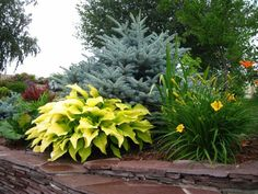 16 Ideas For Small Patio Plants Yard Landscaping Patio Plants, Outdoor Plants, Garden Plants, Beautiful Landscapes, Beautiful Gardens, Small Patio Design, Corner Garden, Landscaping Software, Garden Landscape Design