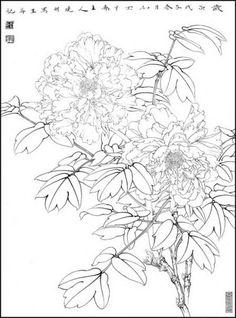 목단외 백묘 : 네이버 블로그 Korean Traditional, Traditional Art, Floral Vintage, Black And White Illustration, Old And New, Artsy Fartsy, Flower Art, Peonies, Watercolor Art