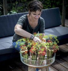 Art Floral, Floral Foam, Fall Flowers, Dried Flowers, Flora Design, Funeral Flowers, Autumn Home, Ikebana, Flower Decorations