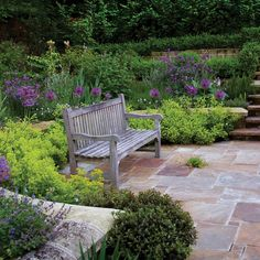 pretty combination of alliums and alchemilla surrounding the patio and bench