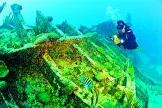 Scuba Diving in BERMUDA! For more information visit our website www.islandtourcentre.com!