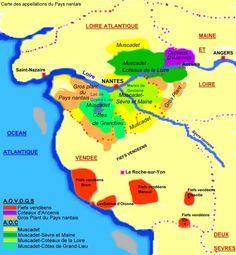 Le vignoble / PAYS-NANTAIS / Loire / Régions / Vins VignesVignerons