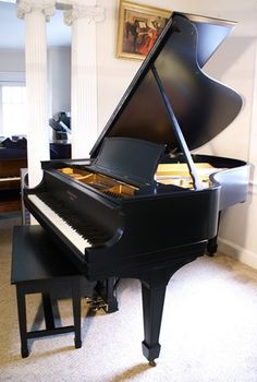 Baby Grand Piano... Beautiful! http://pinterest.com/cameronpiano