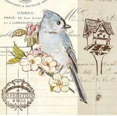 bird sketch - Google Search
