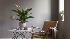 The peace lily, is easy to take care of and thrives in many different climates. Peace Lily, Ragnar, Wishbone Chair, Plant Decor, Floor Chair, Accent Chairs, Planters, Living Room, House