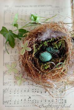 Craftberry Bush: Making a Realistic Bird's Nest #yearofcelebrations