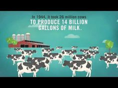 Watch this video to learn how U.S. dairy farmers care for their cows. Treating their cows like family, farmers ensure Americans receive delicious, safe, and nutritious dairy products.