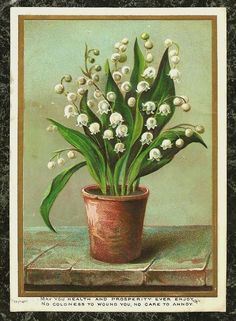 Lily of The Valley in Pot Embossed Victorian New Year Card | eBay