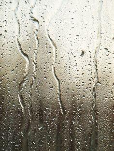 Sound of gentle rain, ~  especially when napping Rainy Night, Rainy Days, Rain Window, Rain Drops On Window, Smell Of Rain, I Love Rain, Rain Go Away, Rain Storm, Going To Rain