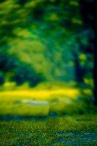 Background Wallpaper For Photoshop, Desktop Background Pictures, Blur Background In Photoshop, Blur Background Photography, Photo Background Editor, Studio Background Images, Light Background Images, Photo Backgrounds, Picsart Background
