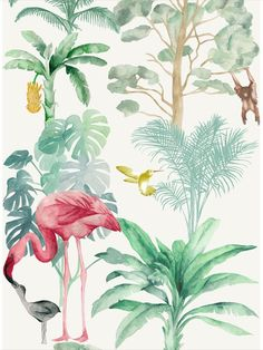 This stunning wallpaper features an exotic array of hand painted tropical plants, birds and delightful jungle animals. Nova wallpaper creates a perfect backdrop for the room and the beautiful colours in the watercolour details creates a striking interior feature for any room. Capture the luxuriant tropics with this large scale and vibrant wallpaper design. This quality wallpaper benefits from being a paste the wall paper, which means it is incredibly easy to apply and work with. Tropical Wallpaper, Stunning Wallpapers, Jungle Animals, Tropical Plants, Exotic Pets, Designer Wallpaper, Order Prints, Pet Birds, Flamingo