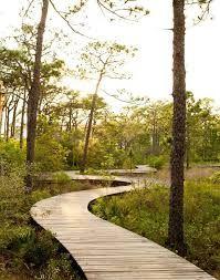 Billedresultat for landscape architecture path deck waterfront