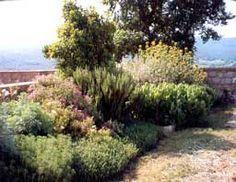 Jardín de bajo o poco mantenimiento