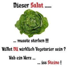 Die 91 Besten Bilder Von Vegan Witzig Witzig Witzige