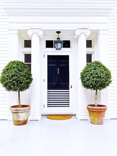 Black front door with white strip details, white columns, and a pair of potted trees.