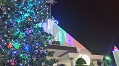 Church, christmas tree, holy mother.