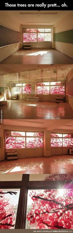 What pretty blossoms...wait