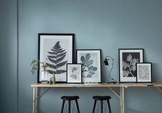 Lets start the week with a small tip. If you don't have the heart to drill holes in your freshly painted walls, arrange your frames in a casual setting on a table or on a shelf. Lovely lamp from @kemikaze stools from @lovewood.dk wall paint from @fluggerofficial glass vase from @ceciliemoisindum #botanicallife #nordicnature #plantlove #danishdesign #lovewood #kemikaze #ceciliemoisindum #flügger #pernillefolcarelli