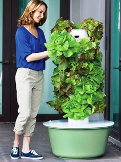 The Best Small Space Planters For Growing Your Own Food Hydroponic Gardening, Organic Gardening, Gardening Tips, Hydroponic Solution, Hydroponic Lettuce, Aquaponics Greenhouse, Indoor Vegetable Gardening, Hydroponic Growing, Juice Plus Tower Garden