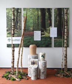 propagace friedwaldu ve výlohách