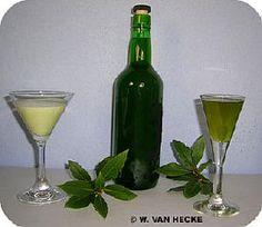 Laurierlikeur zelf maken met de bladeren van de laurier likeur bereiden laurus nobilis