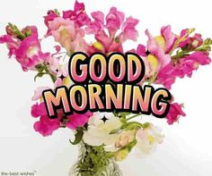 Looking for best Good Morning Wishes and Images with Rose? Check out our collection of beautiful HD Images, Pictures and Pics to send to your loved ones and spread a smile on their faces. Good Morning Beautiful Gif, Good Morning Rose Images, Good Morning Romantic, Good Morning Roses, Good Morning Msg, Hindi Good Morning Quotes, Good Morning Images Download, Good Morning Inspirational Quotes, Good Morning Picture