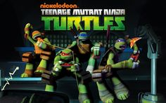 Teenage Mutant Ninja Turtles (TMNT) Michaelangelo, Raphael, Leonardo and Donatello.