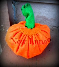Pumpkin Plush!