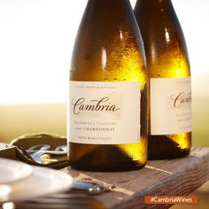Chardonnay - perfect for hot summer days!
