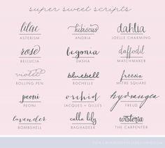 lovely set of script fonts