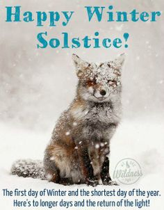 Iranians not only ones celebrating winter solstice : )
