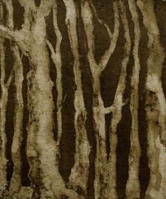 Ink Wood by Claire Cansick