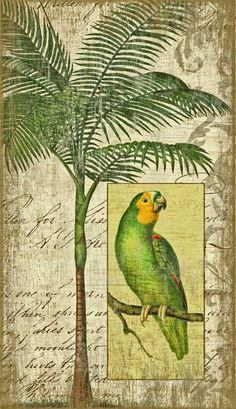 Artist Suzanne Nicoll's dreamy tropical wall art image featuring a bright green parrot and palm tree is printed directly to a distressed wood panel made from tongue and groove slats of alder, hemlock, or fir lumber.
