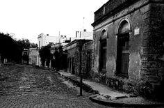Colonia 26.jpg