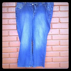 Lane bryant petit jeans Great condition. Petit size 24 plus size Lane Bryant Jeans Boot Cut
