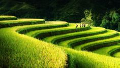©Bsam #Vietnam